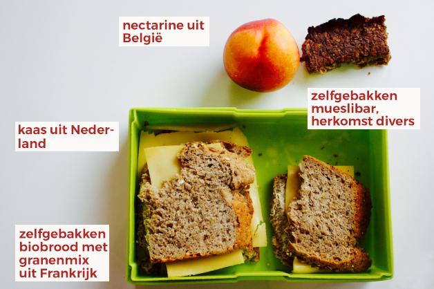lunchbox-tri-vizor